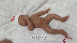 Bébé En Silicone Complet Harper Skye Avec Les Cheveux Enracinés (option Caucasienne Ou Biraciale)